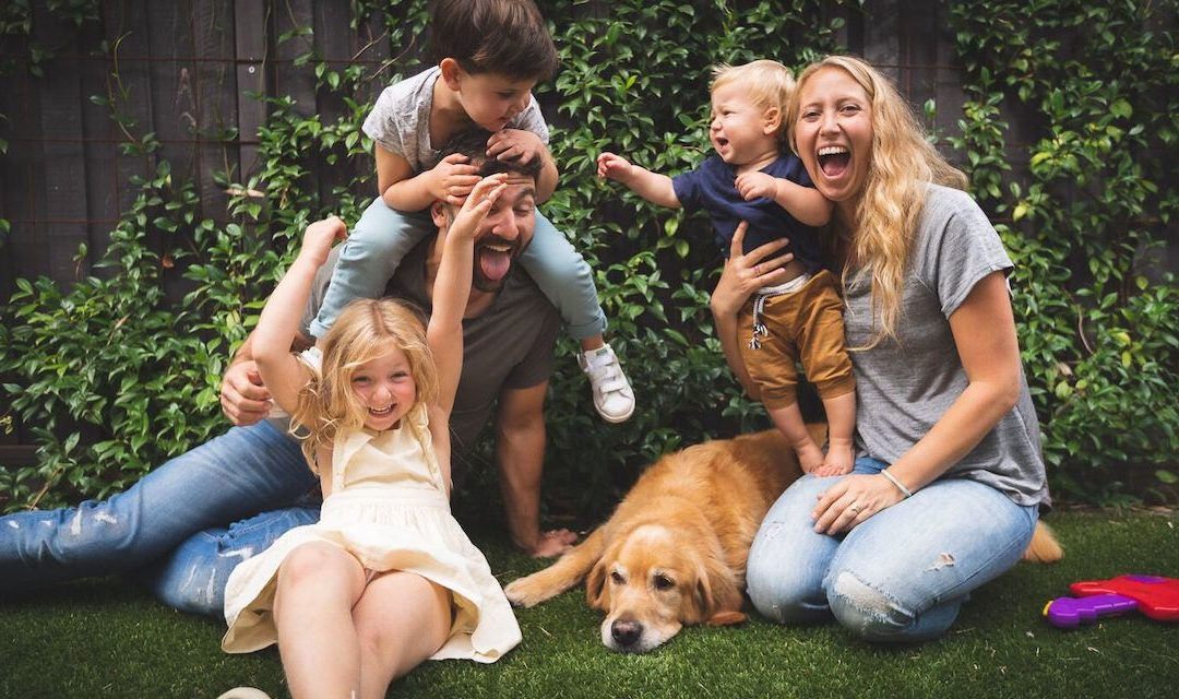 Working With Dogs and Children