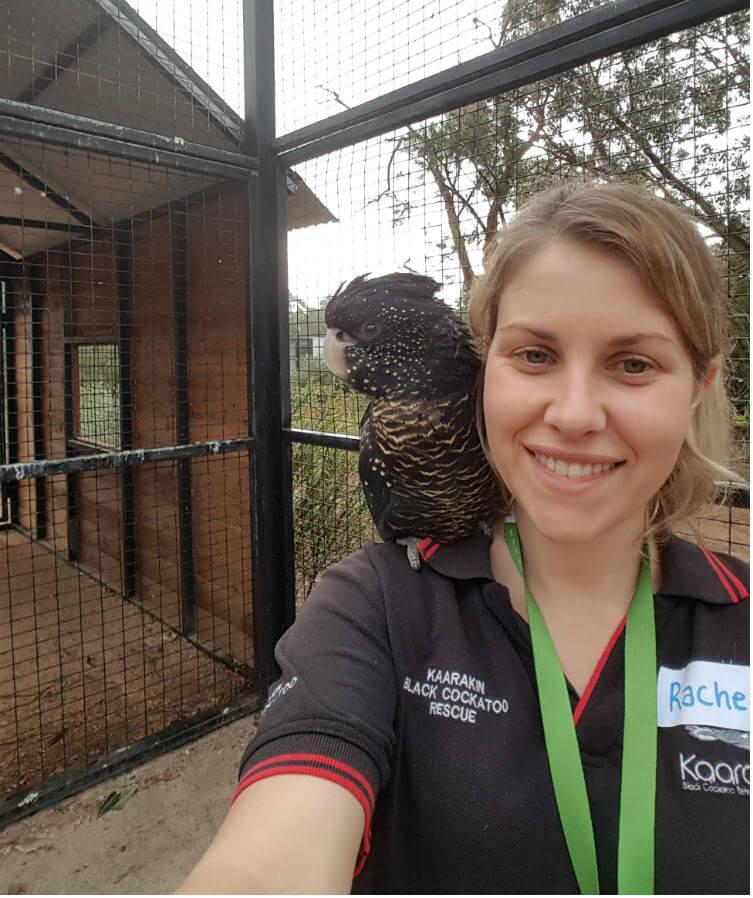 Rachel with 'Aussie' in the Interactive Aviary at Kaarakin