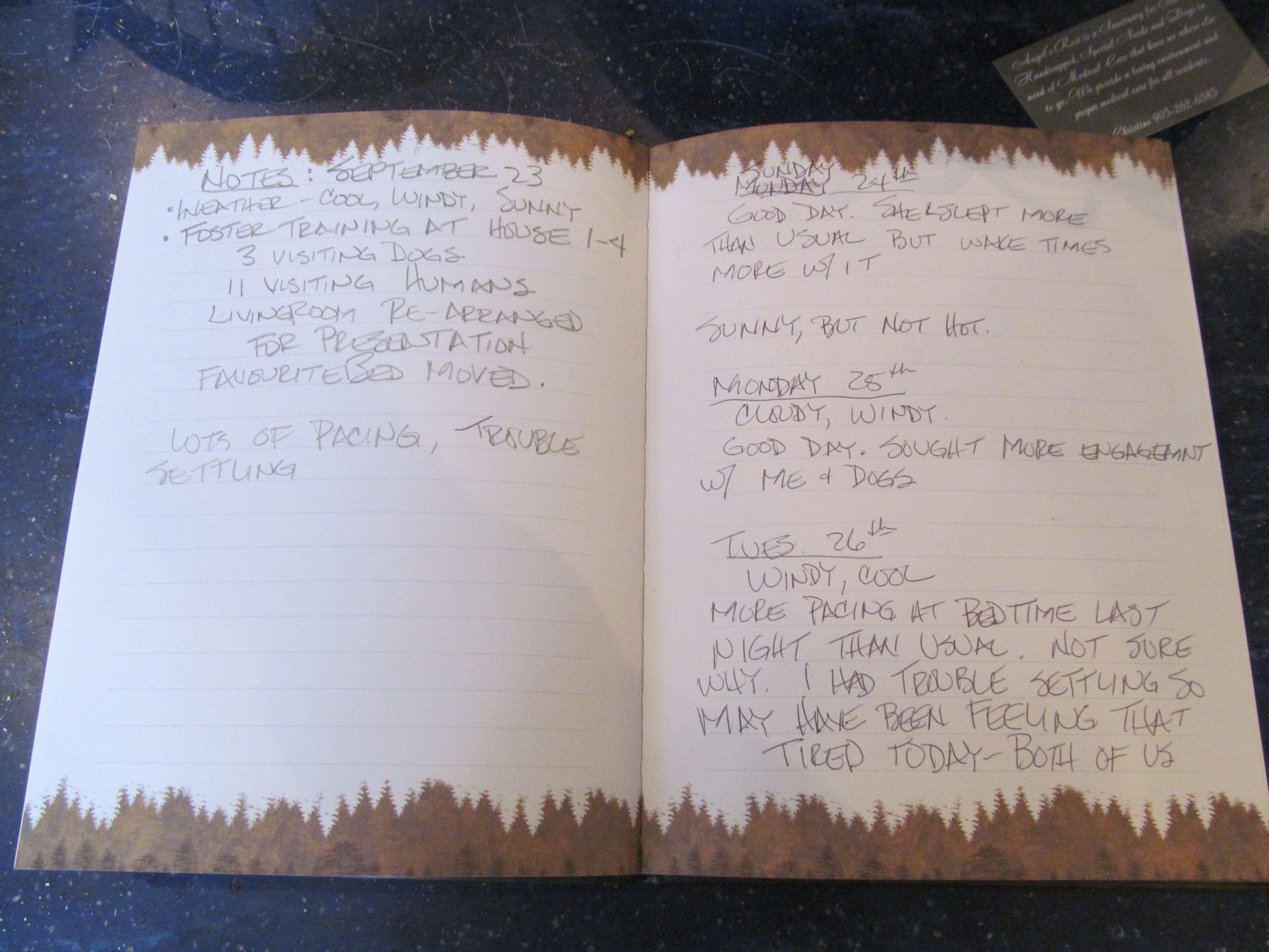 An page in a behaviour journal