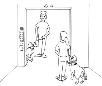 When waiting for the elevator, have your dog sit at your side, between your legs and the wall, and away from the elevator door. Allow everyone to exit the elevator before you enter it.