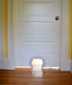 Acat door into the bedroom