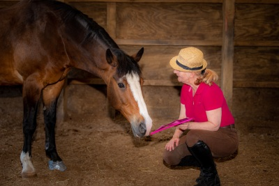 Kneeling by a horse