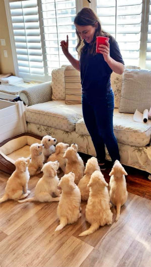 A dog trainer with a group of puppies.