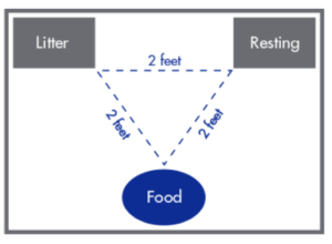 From Bourgeois H, Elliot D, Marniquet P, et al. (2004) Dietary Preferences of Dogs and Cats.1