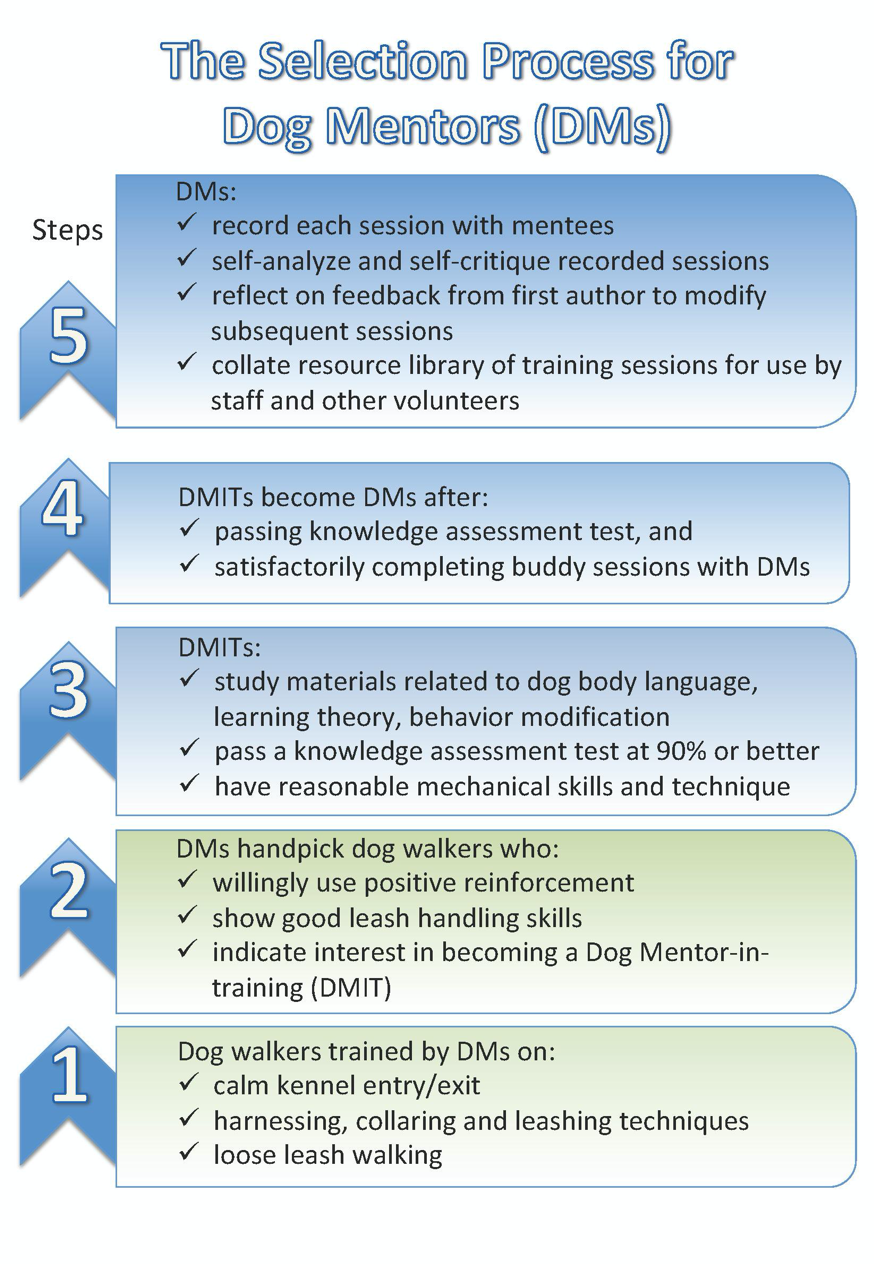 DMs must possess a certain level of skills and knowledge before they go solo in mentoring dogs.
