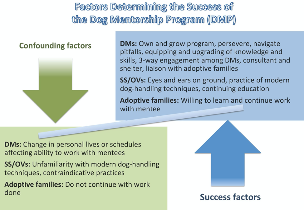 The three key success factors are also confounding factors that drive the direction of the DMP. Legend: DMP (Dog Mentorship Program); DM (dog mentors); SS/OVs (shelter staff and other volunteers).