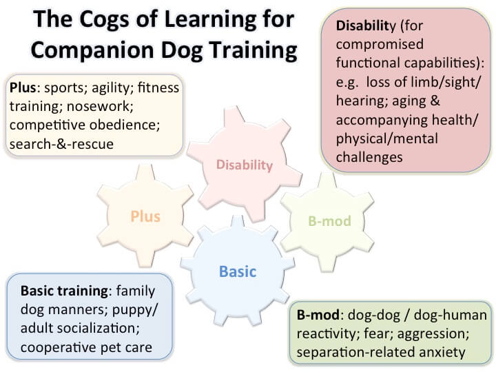 The four cogs of learning that a companion dog may need