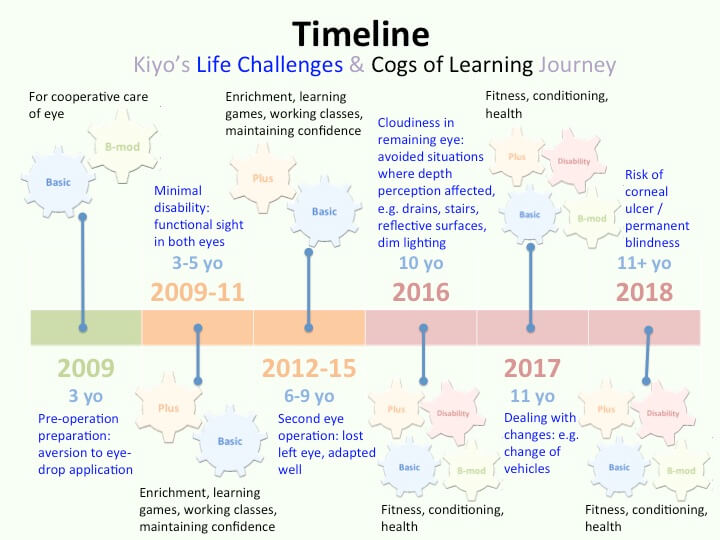 Illustrating the interplay of cogs of learning with Kiyo's life challenges