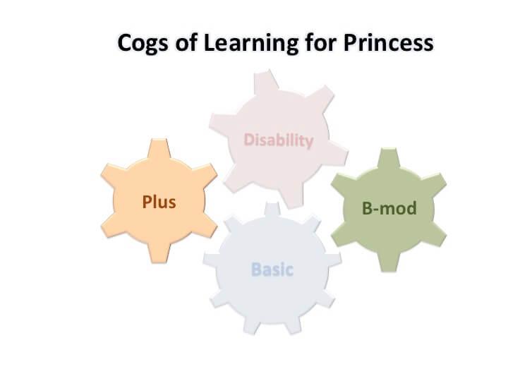 Princess' COL focus: B-mod and Plus