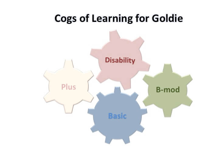 Goldie's COL focus: Basic, B-mod, and Disability