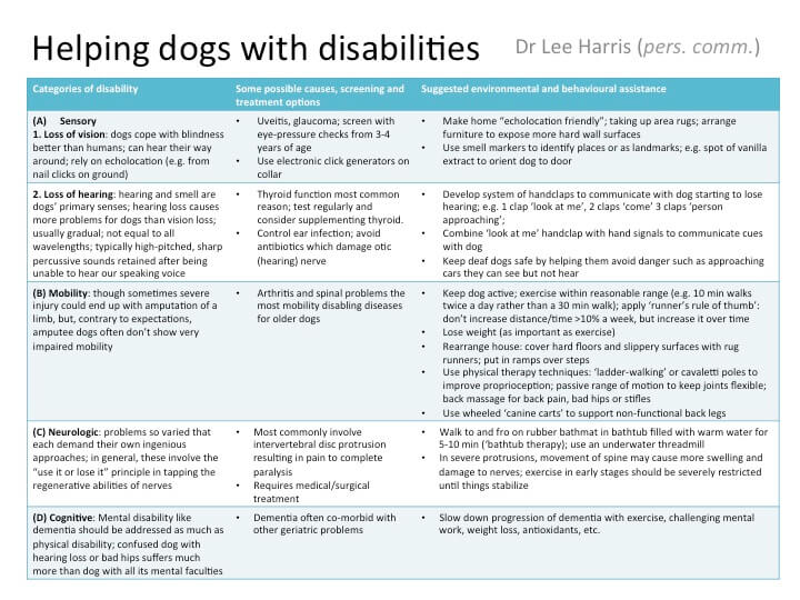 The interplay of medicine, environmental management, and behavior in treating dogs with disabilities