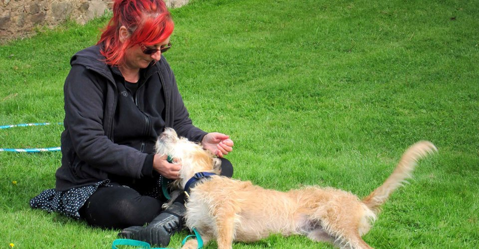 The author and play therapy dog Lykke. Image credit: Dr. Risë VanFleet