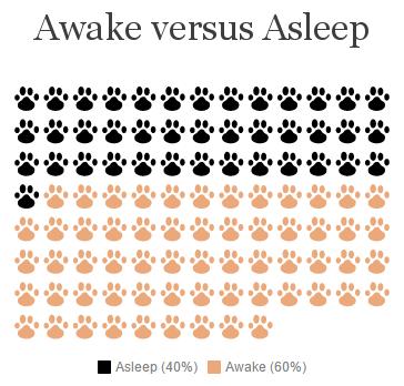 Awake vs Asleep