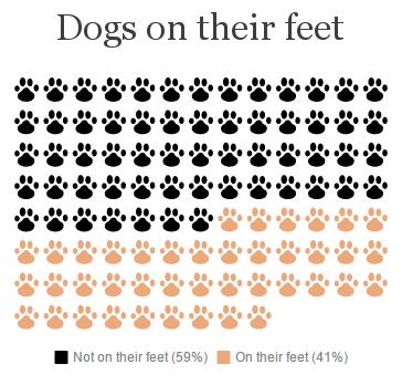 Dogs on feet