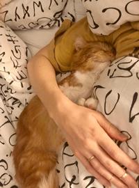 Sal's sleeping position