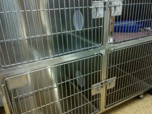 Portalized cat cages