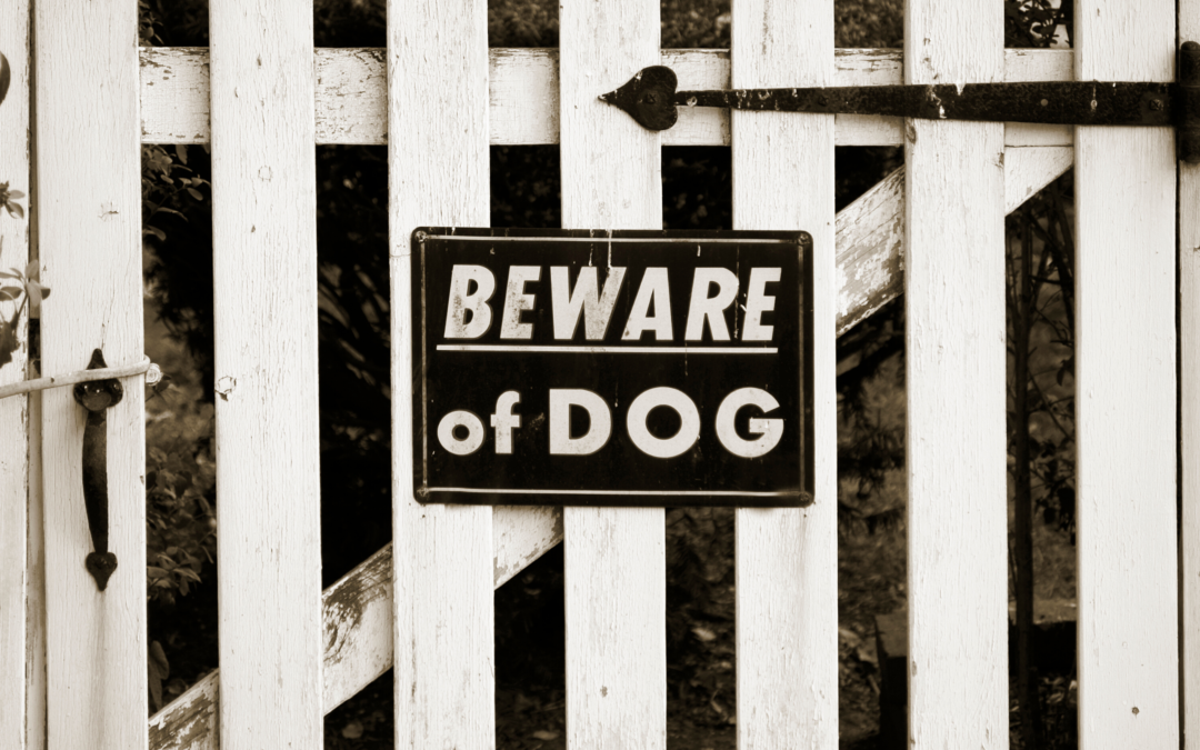 Creating a Better Law to Protect People From Potentially Dangerous Dogs