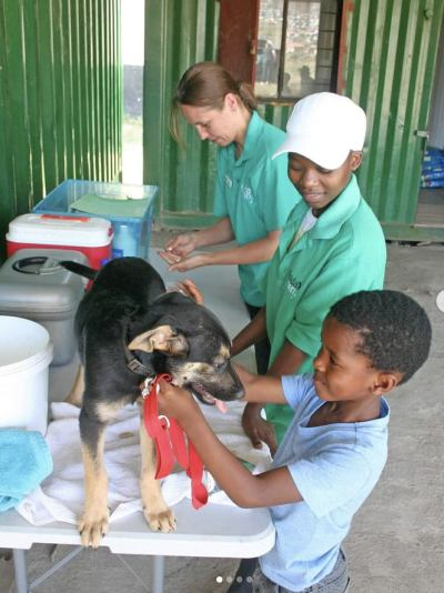 Veterinary nurse Christine Klapprodt working at the free clinic