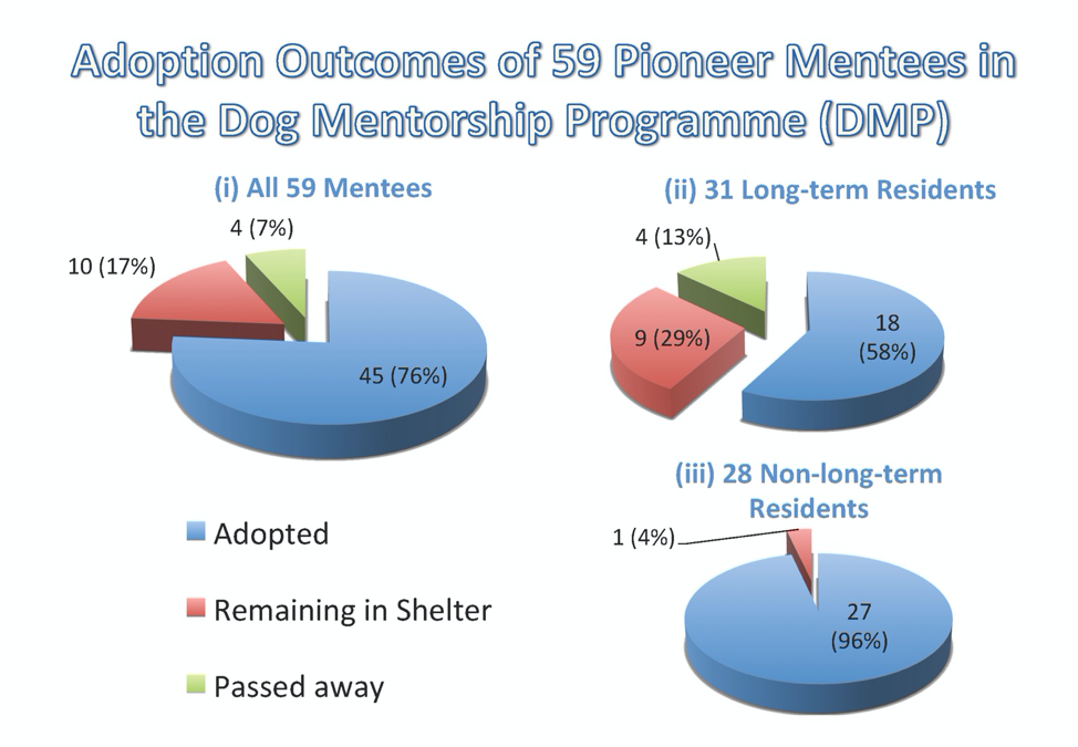 Adoption outcomes of long-term and non-long-term residents among the pioneer mentee dogs.