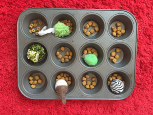 muffin tin for cats