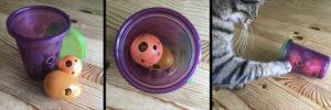 cat foraging toys