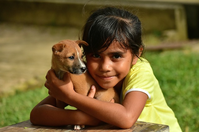 Facilitating Client Compliance Using the Strategy of Comparisons of Dog to Child Behavior